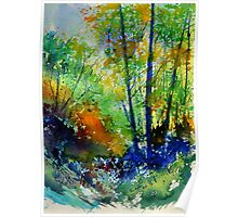 watercolor 217003 Poster
