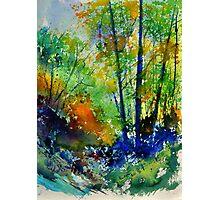 watercolor 217003 Photographic Print