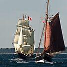 Tall ship race nr. 2 by imagic