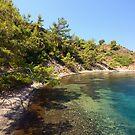 Aegean Nature by Anton Gorlin