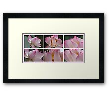Lilies on Pink Framed Print