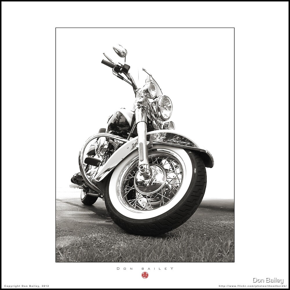 Becky's Harley-Davidson Deluxe by Don Bailey