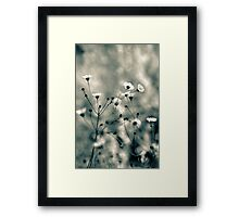 All that is left, is a memory Framed Print