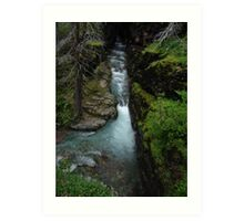 AVALANCHE CREEK, GLACIER NATIONAL PARK Art Print