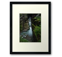 AVALANCHE CREEK, GLACIER NATIONAL PARK Framed Print
