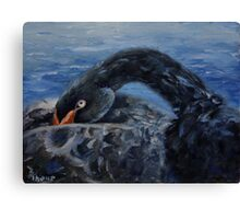 Black Swan Original Oil Painting Canvas Print