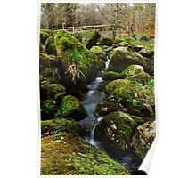 Tranquil Stream Poster