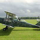 de Havilland DH 83 Fox Moth by Ross Sharp