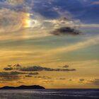 Sun Dog by Tom Gomez
