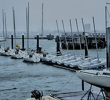 A Port in the Storm by Sonja Dover