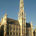 Hotel de Ville, Brussels by John Evans