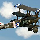Sopwith Triplane N6290 B-BOCK by Colin Smedley