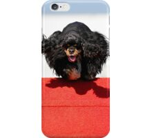 Cute furry dog for your iPhone iPhone Case/Skin