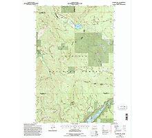 USGS Topo Map Washington State WA Aladdin Mtn 239769 1992 24000 Photographic Print