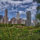 Chicago Sky by anorth7