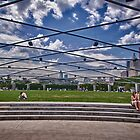 The Field at Millennium Park by Adam Northam