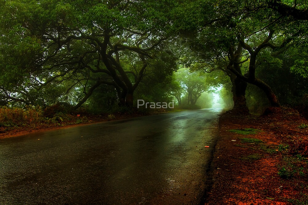 Monsoon Magic by Prasad