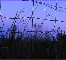 The Moon in Blue by TrendleEllwood