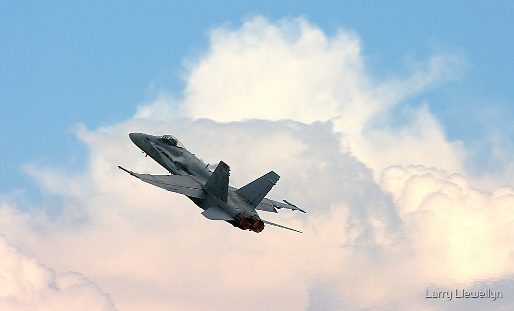Hornet................. by Larry Llewellyn