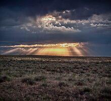 The Shining 1 by Adam Northam