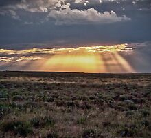 The Shining 4 by Adam Northam