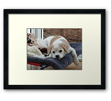 I Am Sooooooo Bored! Framed Print
