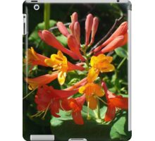 Orange Flowers of Woodbine HoneySuckle iPad Case/Skin