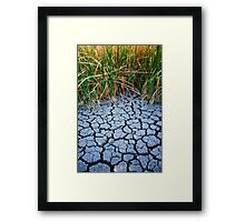 Dried Earth Long Framed Print