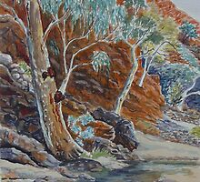 Redbank Gorge 2, West MacDonnell Ranges, NT by Virginia  Coghill