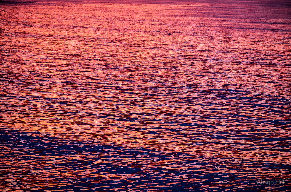 Water at Sunrise by Alison Hill