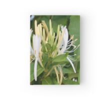 Closeup shot of Lonicera European Honeysuckle Flower Hardcover Journal