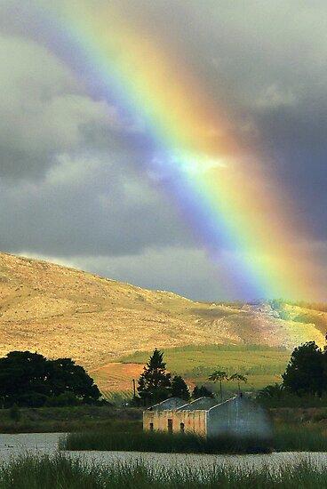 Rainbow by Anton Alberts