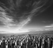 Princes pier in mono - Melbourne by Hans Kawitzki
