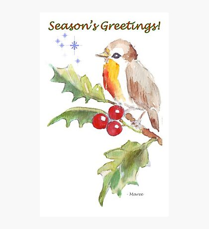 Season's Greetings! 1 Little bird (1) Photographic Print