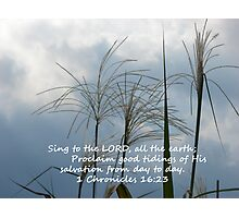 """1 Chronicles 16:23""  by Carter L. Shepard Photographic Print"