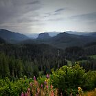 Far Away by Charles & Patricia   Harkins ~ Picture Oregon