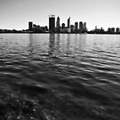 Swan River by Richard Owen