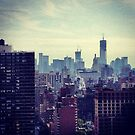 View Looking South - Manhattan by SylviaS