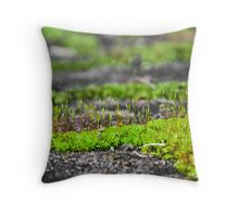 31st July 2012 Throw Pillow