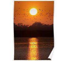 Tring Reservoir Sunset Poster