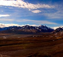Denali Panorama by Paul Wolf