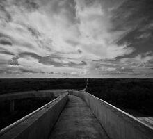 Florida's Everglades by photogenpix