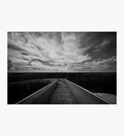 Florida's Everglades Photographic Print