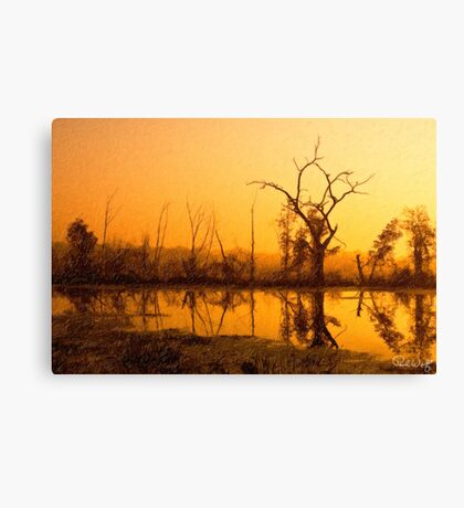 Dawn at Elm Lake Canvas Print