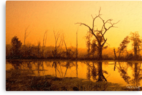 Dawn at Elm Lake by Paul Wolf