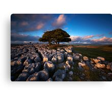 Dales Delight Canvas Print