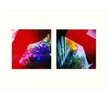 Obscured - 120 Color Holga Diptych  Art Print
