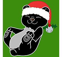 Christmas Black Bear with Red Santa Hat, Holly & Silver Bell Photographic Print