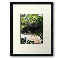 Jungle Bridge - Puente De La Selva Framed Print