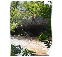 Jungle Bridge - Puente De La Selva Poster